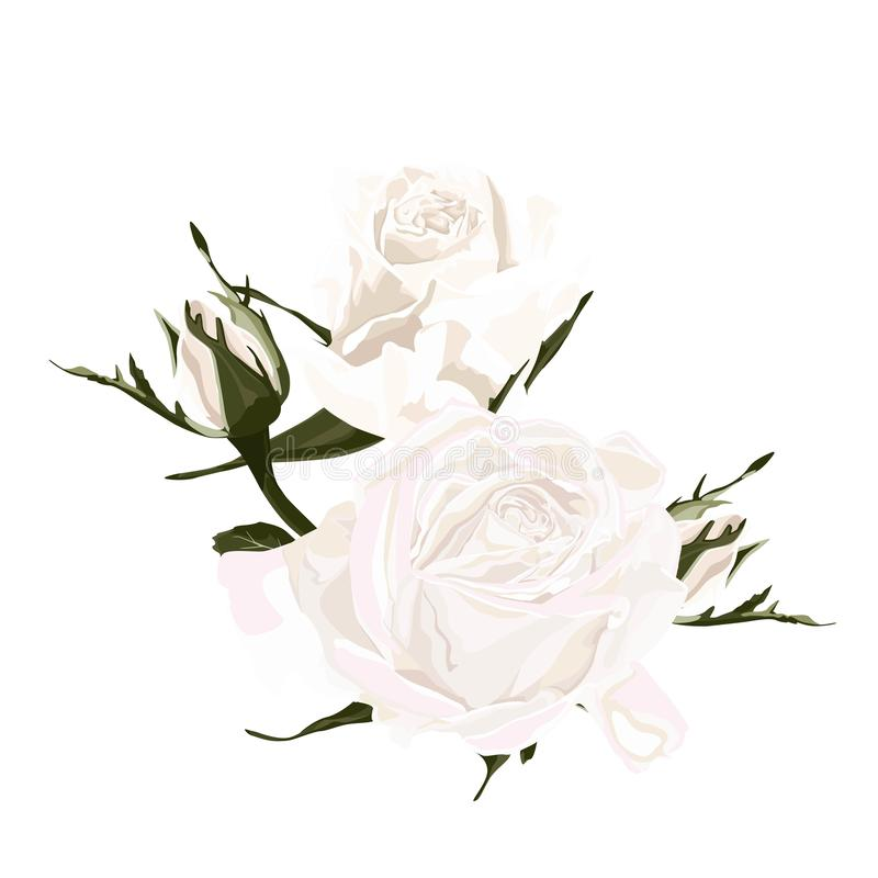 Floral branch. Flower white rose and bud. Wedding concept with flowers. Floral poster, invite. Vector arrangements for greeting card or invitation design stock illustration
