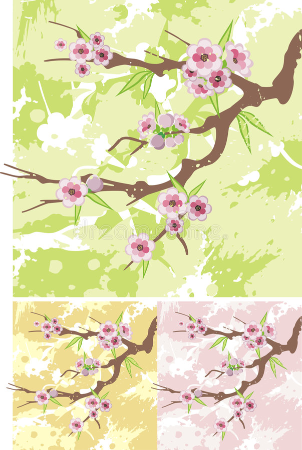 Floral branch series stock images