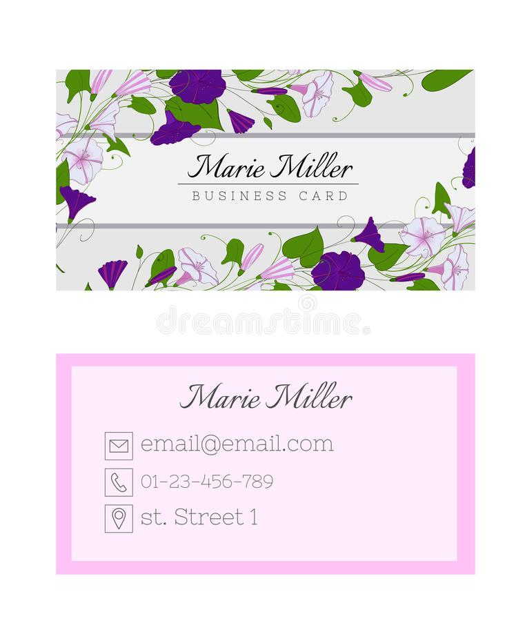 Floral business card template. Elegant feminine design with flowers binweed and convolvulus. Pastel color stock illustration