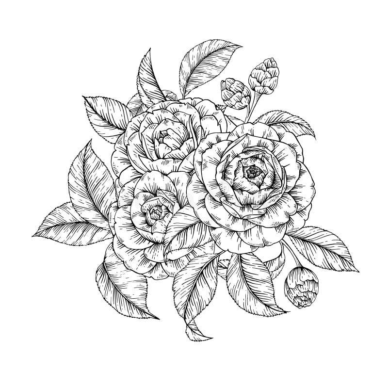 Floral camellia print vector illustration
