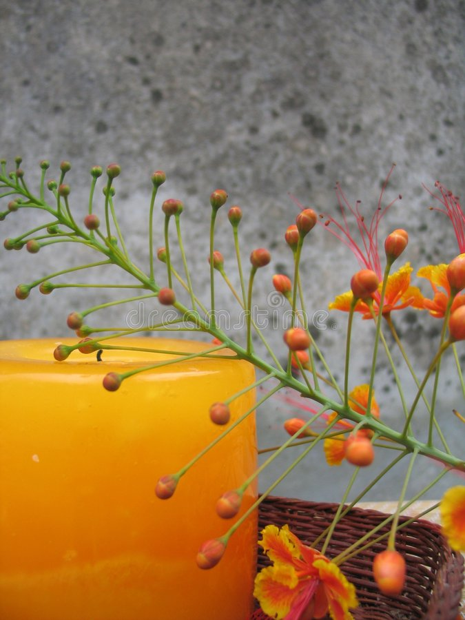 Free Floral Candle Still Life Royalty Free Stock Images - 1234959