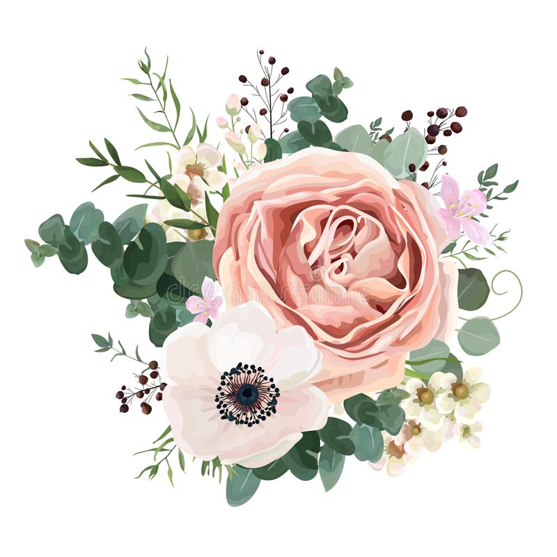Floral card vector Design: garden flower lavender pink peach Rose white Anemone wax green Eucalyptus thyme leaves elegant greener. Y, berry, forest bouquet print royalty free illustration