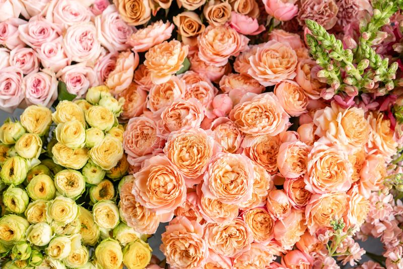 Floral carpet or Wallpaper. Background of mix of flowers. Beautiful flower for catalog or online store. Floral shop and stock image