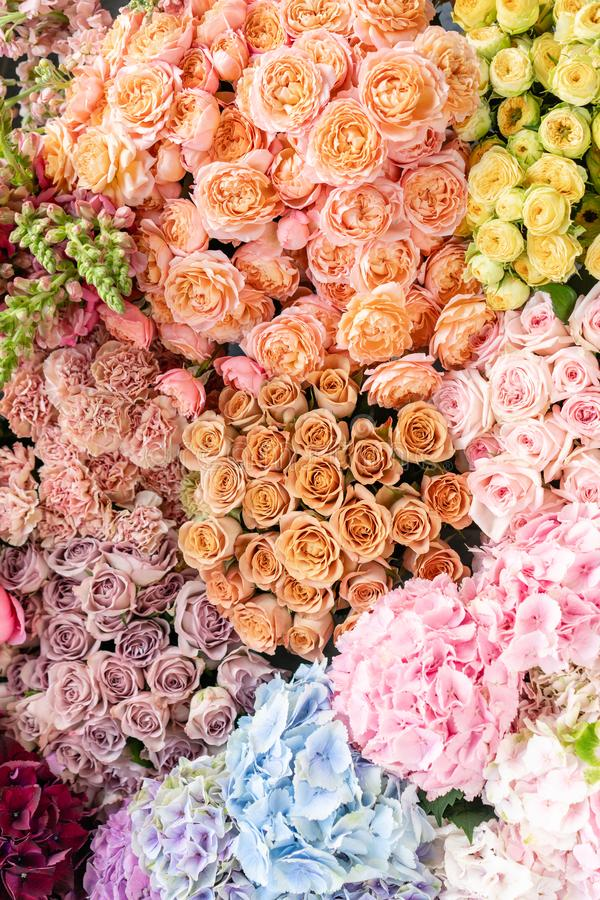 Floral carpet or Wallpaper. Background of mix of flowers. Beautiful flower for catalog or online store. Floral shop and stock photo