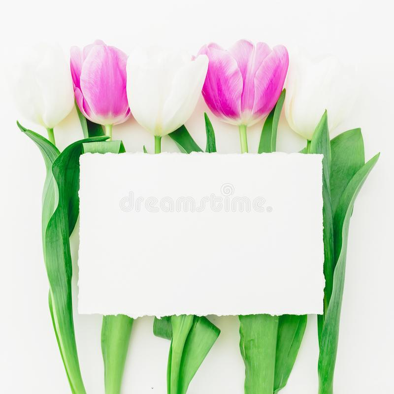 Floral composition of tulips flowers and paper card with copy space on white background. Flat lay, Top view stock image