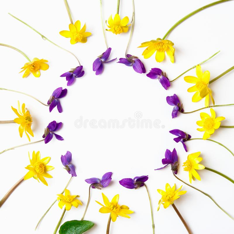 Floral composition. Yellow and violet flowers on white background. Flat lay, top view, copy space.  stock photo