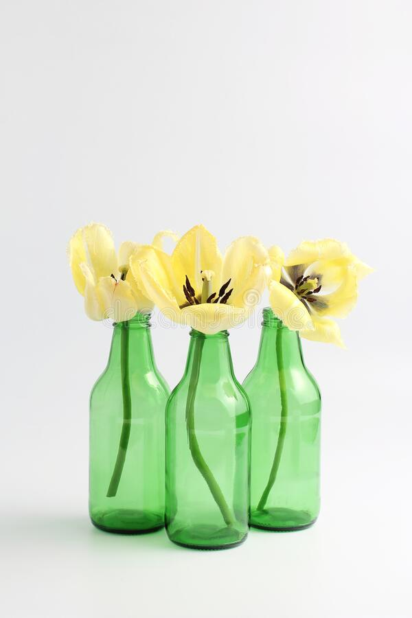 Simple composition of yellow flowers and green vases. Floral concept. simple composition of yellow flowers and green vases stock photography
