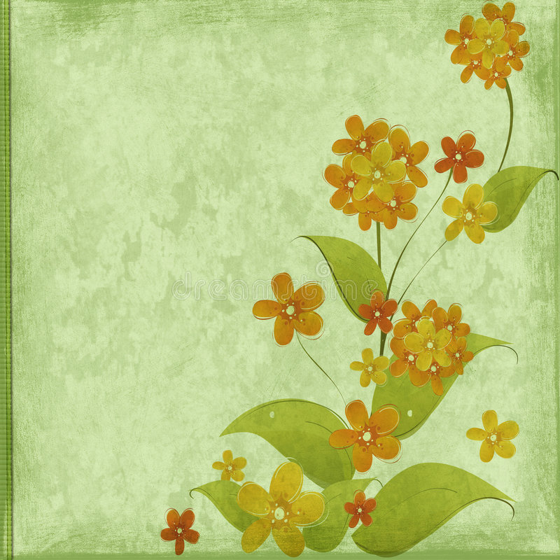 Floral congratulation stock images