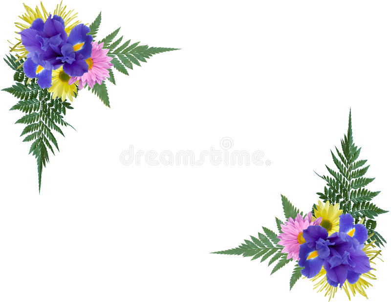 Download Floral Corners stock image. Image of isolated, iris, border - 5168039