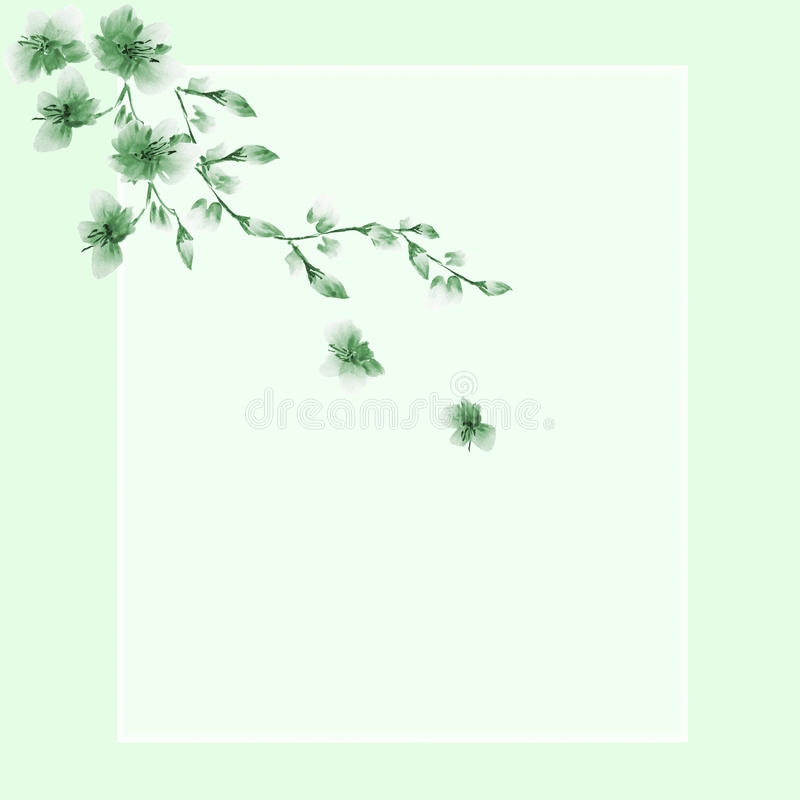 Floral decoration. Birthday card. Blossoming branch with green flowers on a green background. Watercolor stock photos