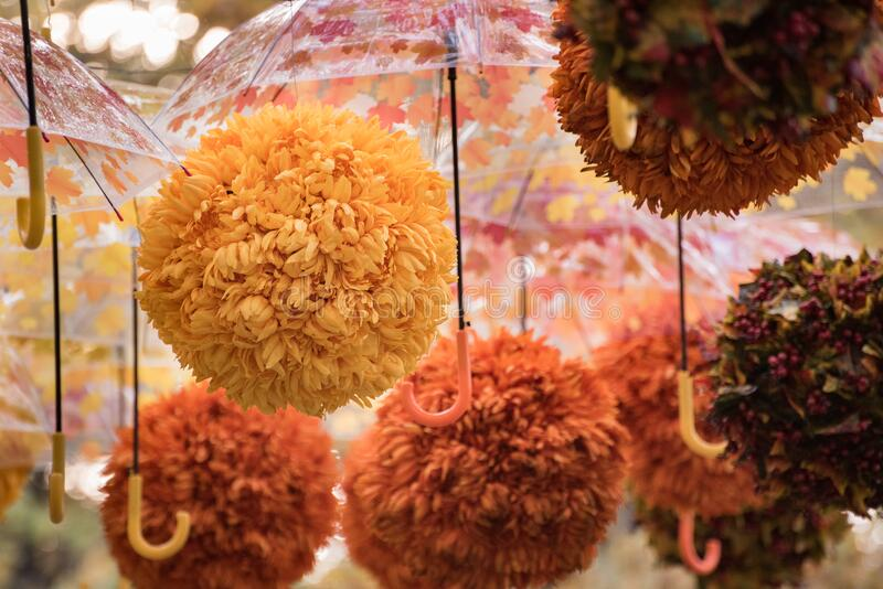 Floral decoration. Coloured umbrellas and flowers. Autumn decor.  stock photography