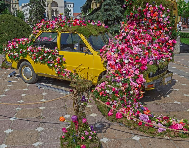 Floral decoration of an old car in Victory Square, Timisoara, Romania royalty free stock photography