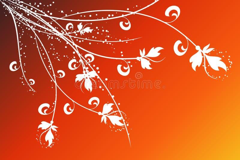 Floral design vector illustration