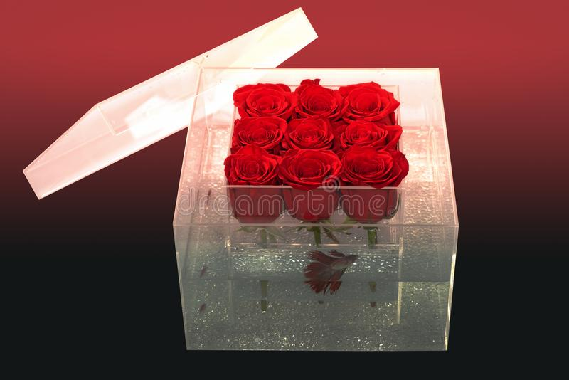 Floral design. Aquarium with fish and roses. Flower shop. red rose bouquet in box. Love and passion. Valentines day. Present. It is for you. merry me. huney stock photo
