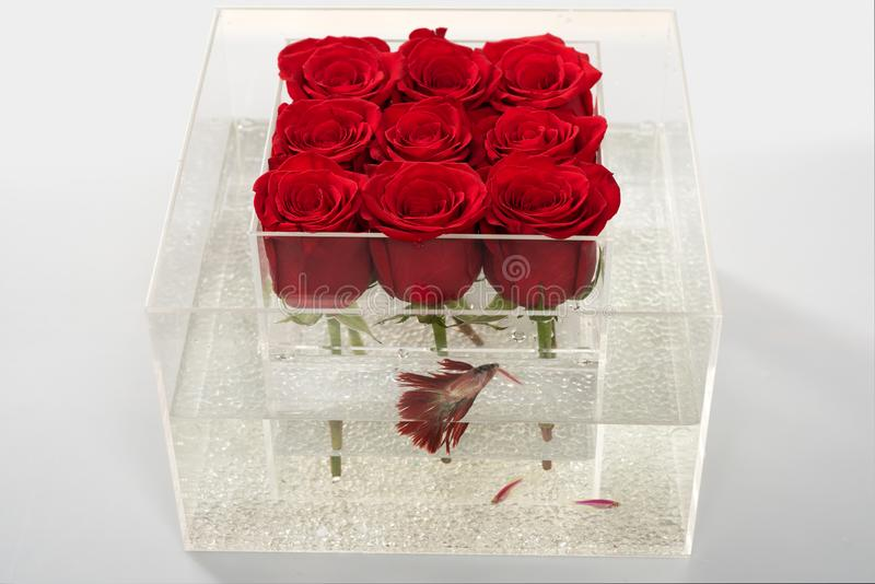 Floral design. Beautiful flower for you. red rose bouquet in box. Love and passion. Aquarium with fish and roses. Flower. Shop. Valentines day present stock photography