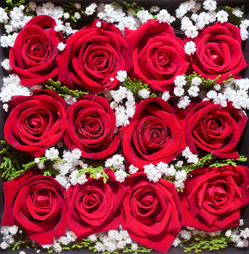 Floral design. Beautiful  flower for you. red rose bouquet in box. Love and passion. Valentines day present. decorative rose. Floral design. Beautiful flower for stock photos