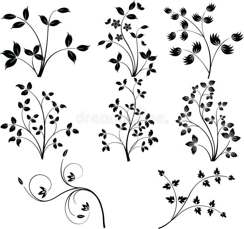 Download Floral Design  Elements Vector Stock Vector - Image: 5516146