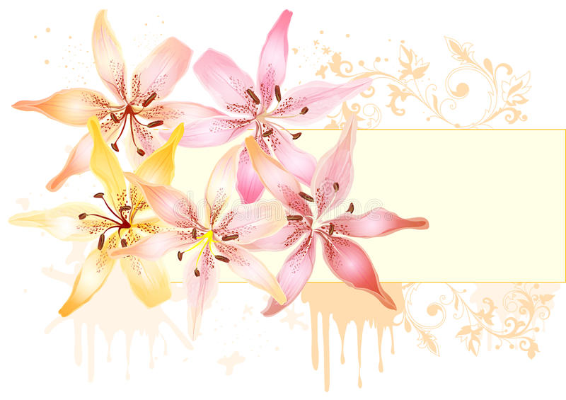 Floral design with lily and frame for text stock photography