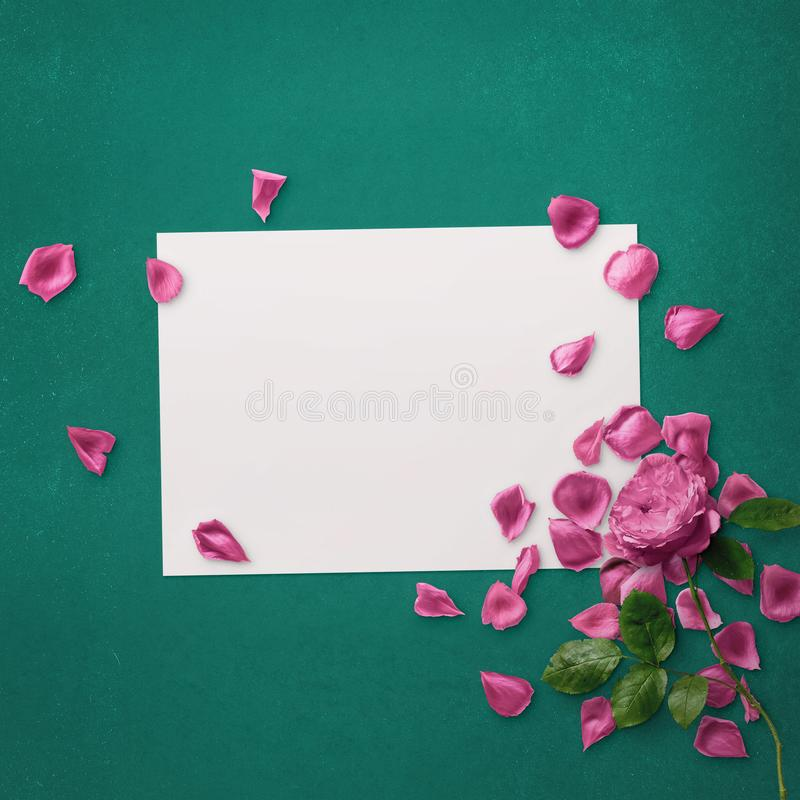 Floral design for Save The Date, Thank you card, mothers day, valentines day, birthday cards. Floral design for Save The Date, Thank you card, mothers day royalty free stock photo