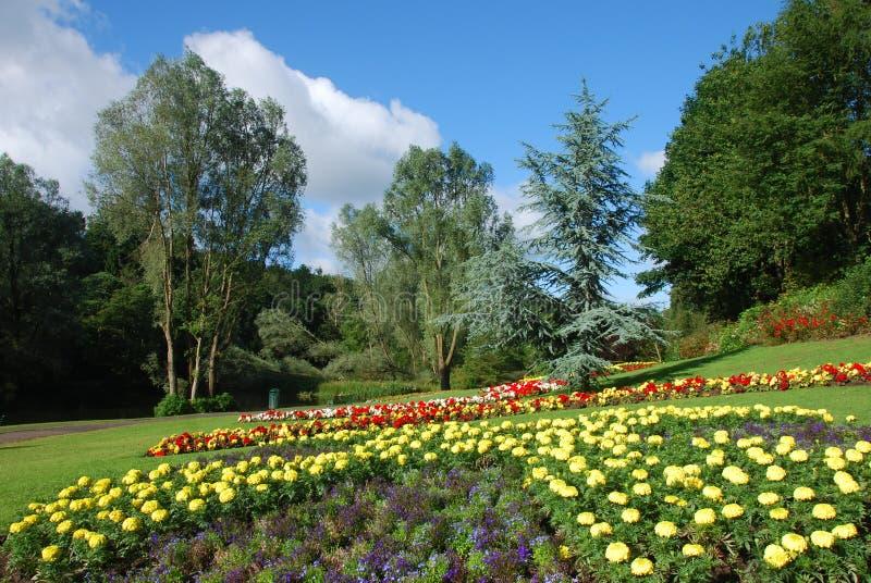 Floral Display Royalty Free Stock Photos