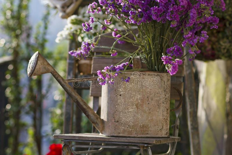 Floral and driftwood decoration crafts. In a urban garden royalty free stock image