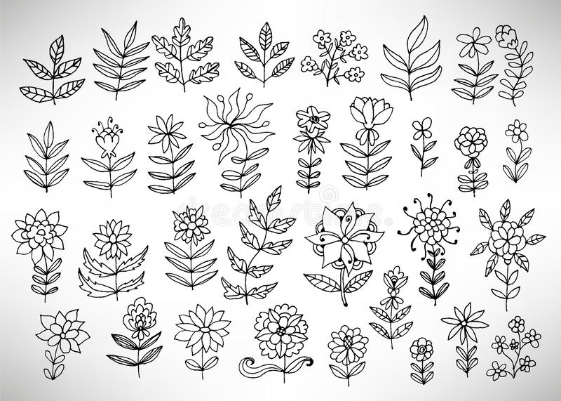 Big set of hand drawn thin line black grungy  doodle floral icons, branches, plants, petals, fantasy flowers. vector illustration