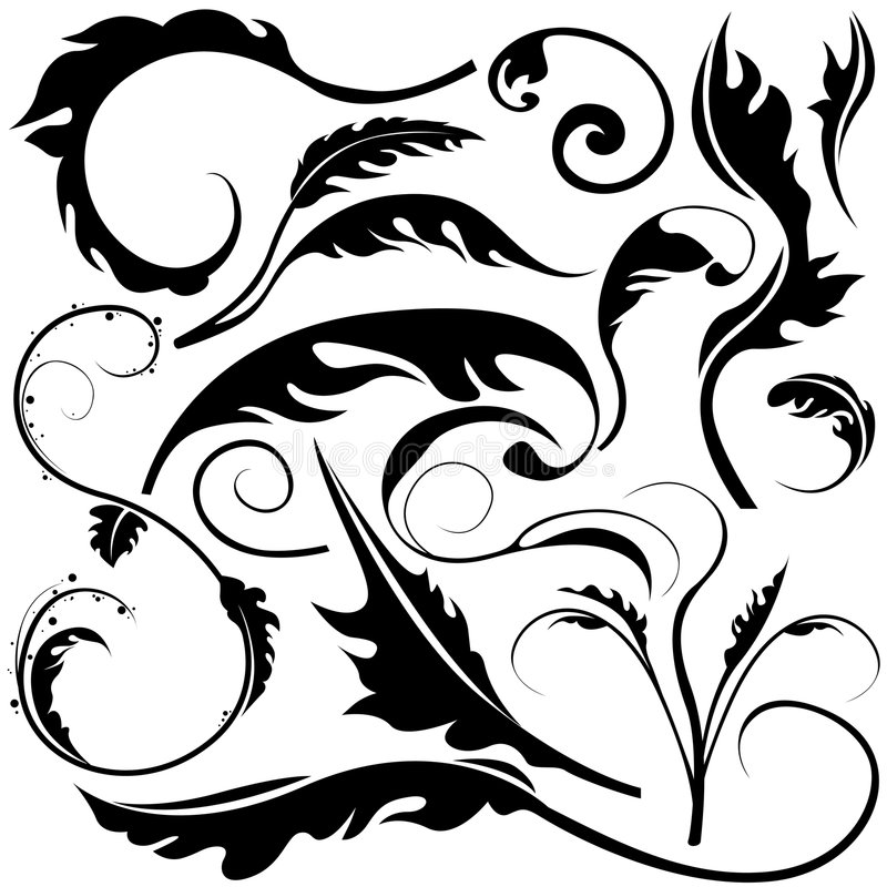 Floral elements D vector illustration