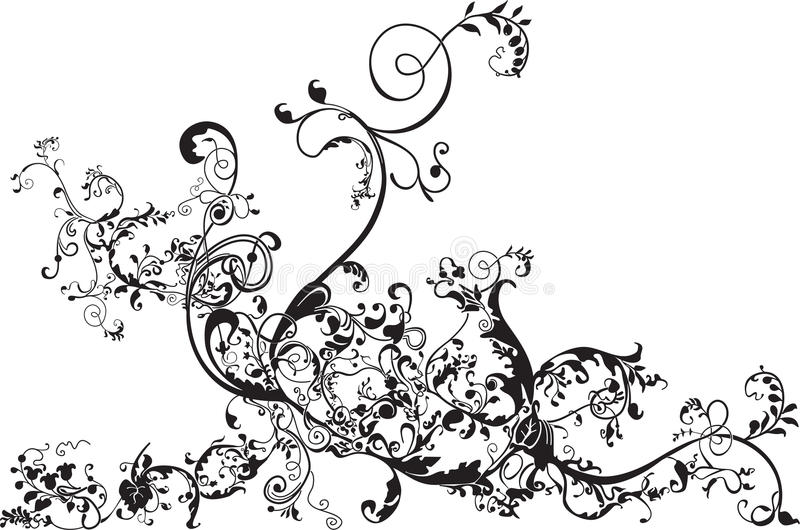 Floral flourish. A floral flourish in black isolated on white