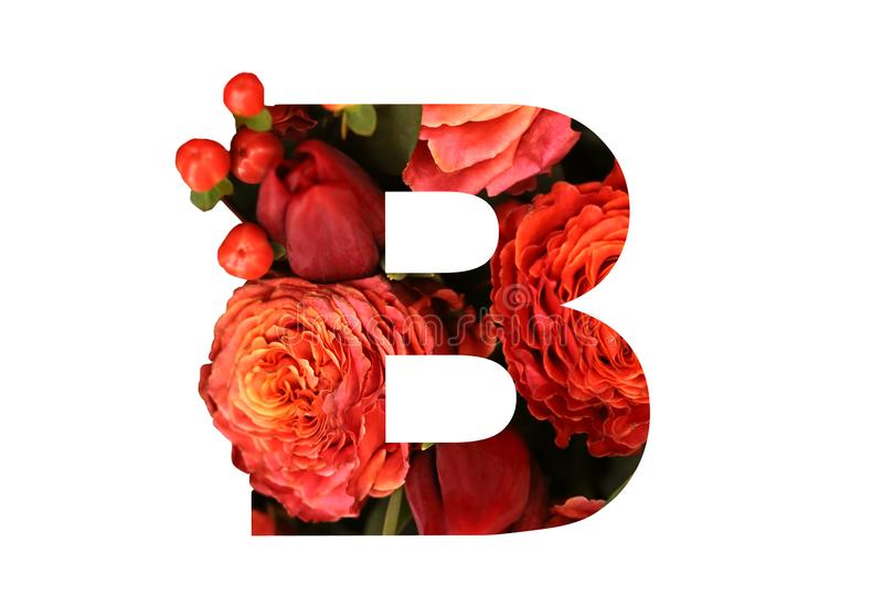 Floral font letter B from a real red-orange roses for bright design. Stylish font of flowers for conceptual ideas royalty free stock images