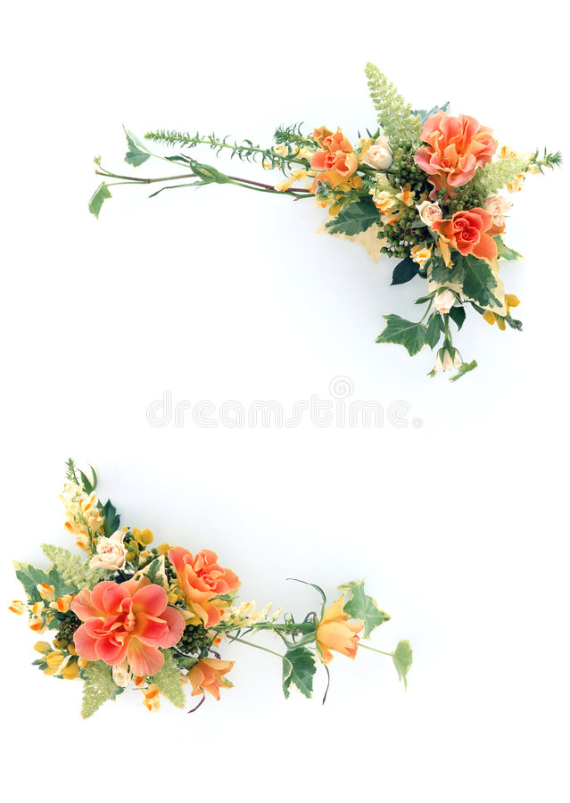Free Floral Frame-10 Royalty Free Stock Images - 2854269