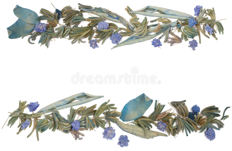 Floral frame. Beautiful floral frame in blue colors with flowers, cereals and leaves royalty free illustration