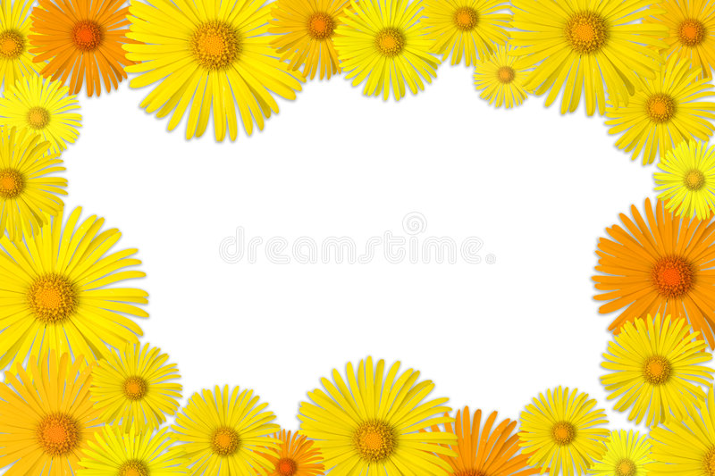 Floral frame. Frame made of yellow flowers stock photos