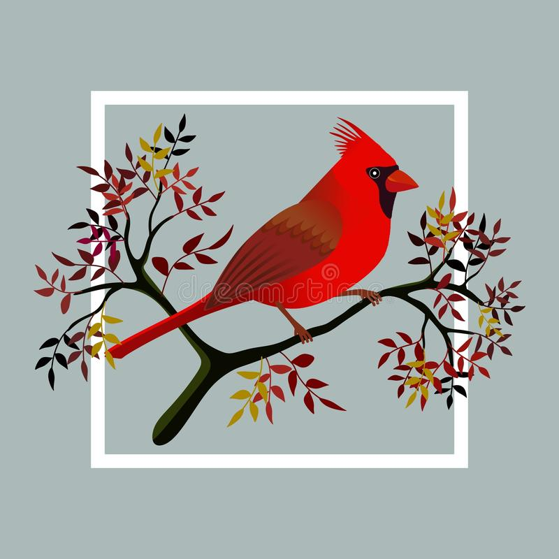 Cardinal bird on a branch. Floral frame with a cardinal bird on a branch with leaves and berries. Vector illustration stock illustration