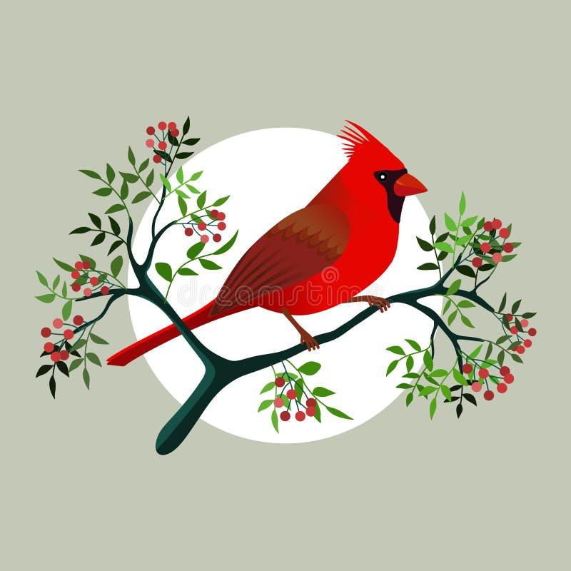 Cardinal bird on a branch royalty free illustration