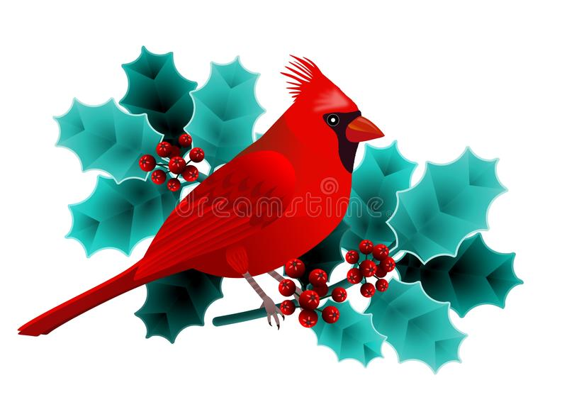 Floral frame with cardinal bird on holly branch with green leaves and red berries. stock illustration