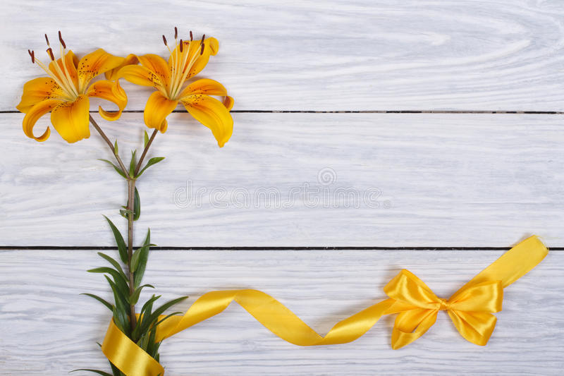 Floral frame from flowers yellow lily and ribbons. With bow royalty free stock photos