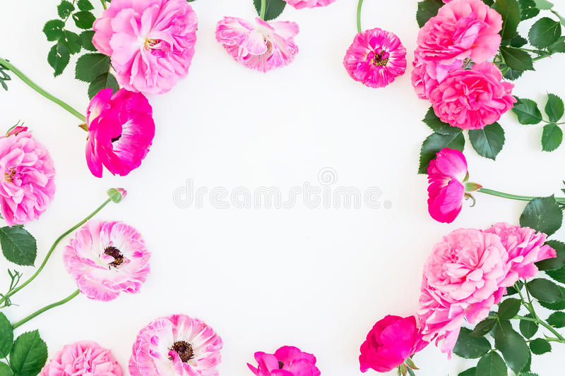 Floral frame made of pink roses, peonies and leaves on white background. Flat lay, top view. Floral lifestyle composition. Floral frame made of pink roses stock photos