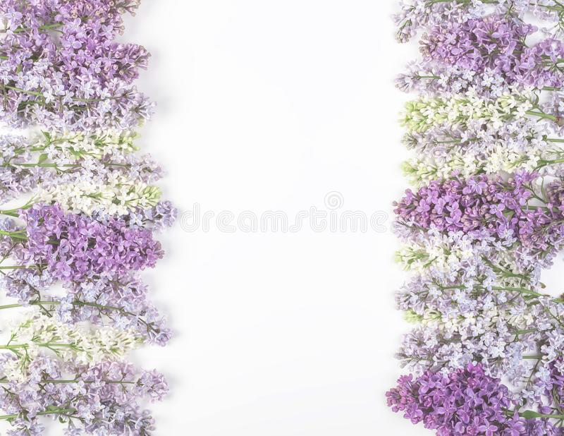 Floral frame made of spring lilac flowers isolated on white background. Top view. Flat lay. Floral frame made of spring lilac flowers isolated on white royalty free stock images