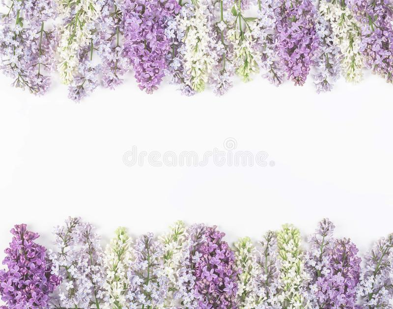 Floral frame made of spring lilac flowers isolated on white background. Top view. Flat lay. Floral frame made of spring lilac flowers isolated on white royalty free stock photography