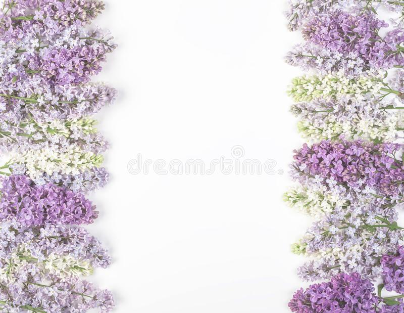 Floral frame made of spring lilac flowers isolated on white background. Top view with copy space. royalty free stock photos