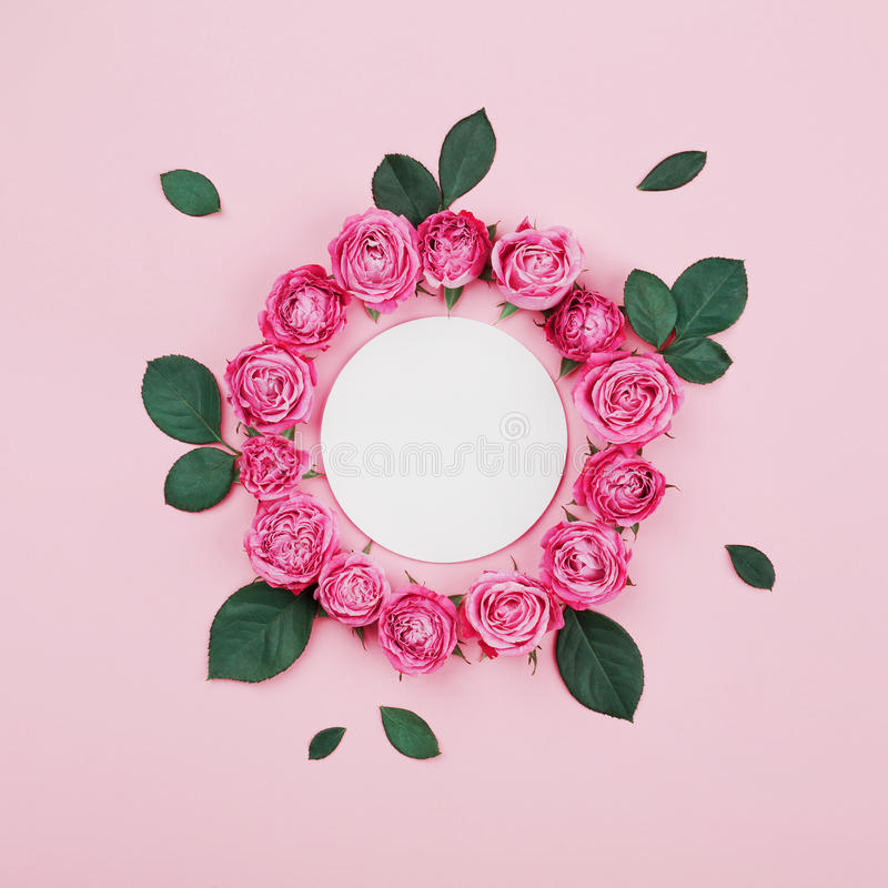 Floral frame made of white blank, pink rose flowers and green leaves on pastel background top view. Flat lay styling. stock images