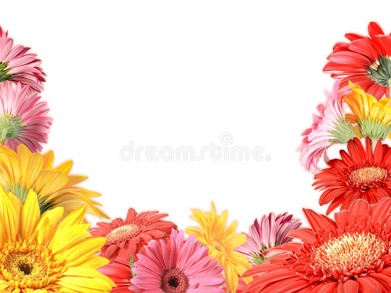 Download Floral Frame With Motley Flowers Stock Photo - Image: 24597962