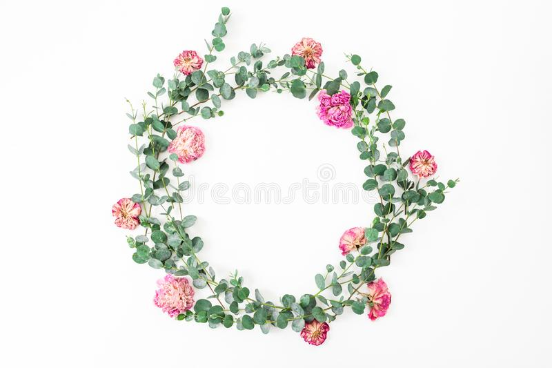 Floral frame with pink roses flowers and eucalyptus branch on white background. Flat lay, top view royalty free stock image