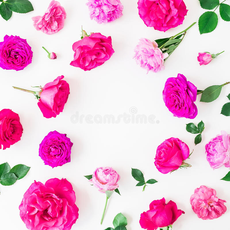 Floral frame of pink roses and leaves on white background. Flat lay, top view. Floral lifestyle composition. Floral frame of pink roses and leaves on white royalty free stock images