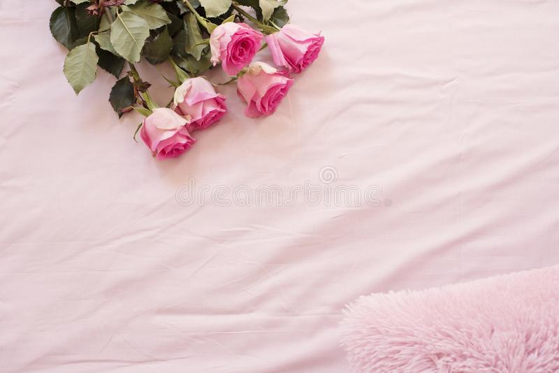Floral frame with stunning pink roses on pink bed sheets in the bedroom. Copy space. Wedding, gift card, valentine`s day or mothe stock photography