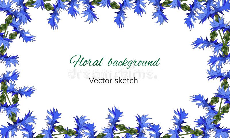 Floral frame for text. Bright blue flowers on a white background for decoration, paper, cards, greetings. Cornflowers. Vector. Illustration vector illustration