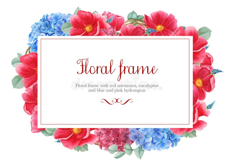 Floral frames with red anemones, pink and blue hydrangea and branches of eucalyptus, watercolor painting stock illustration