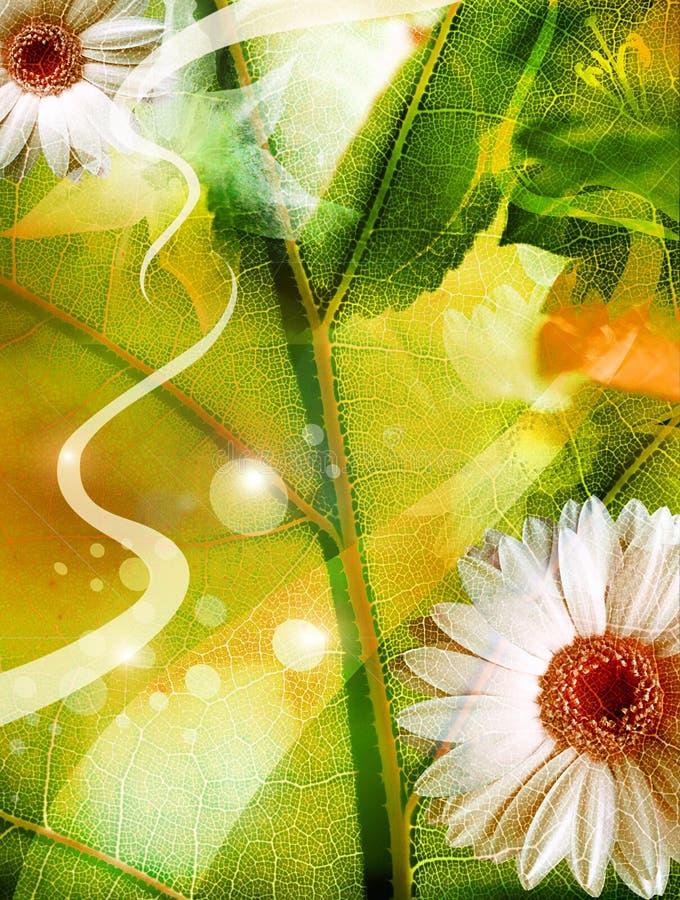 Floral freshness royalty free illustration