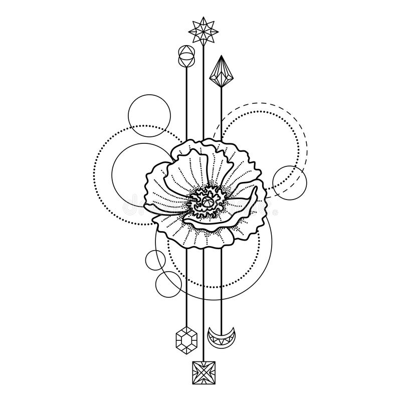 Simple Poppy Tattoo Designs