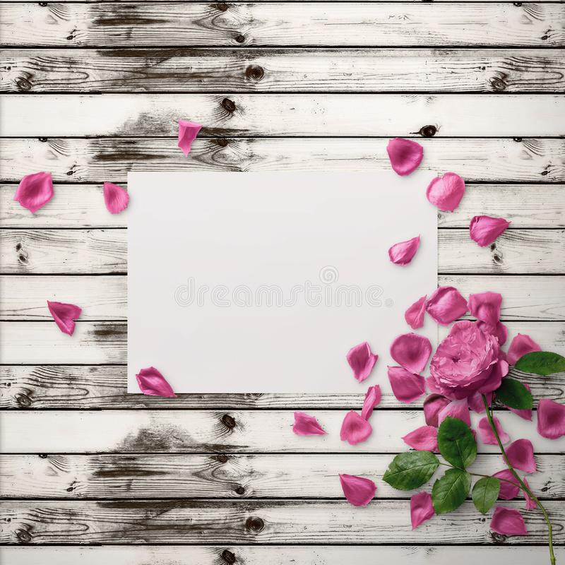 Floral Graphic Design. Frame with flowers and border. Fashion illustration. royalty free stock image